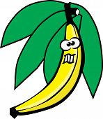 Bananacolor.eps
