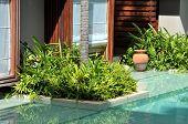 Swimming Pool Resort Grass Pot
