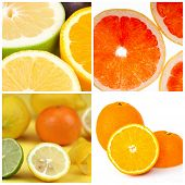 Collage Of Citrus