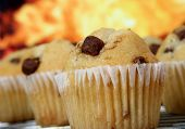 Golden Chocolate Chip Muffins Baked In The Kitchen