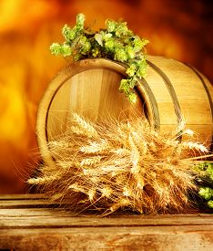 foto of brew  - Wooden barrel with green hops and ears of wheat on table - JPG