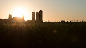 pic of tassels  - The rising sun bursts forth over the barn and silos of a farm while hitting the tassels of corn  - JPG