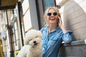 stock photo of bichon frise dog  - Cute blonde in sunglasses and a bright blue denim shirt emotionally talking on a cell phone - JPG