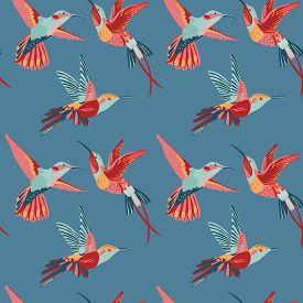 stock photo of hummingbirds  - Hummingbird Background  - JPG