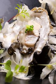 picture of oyster shell  - Oyster on the half shell with fennel salad and seaweed - JPG