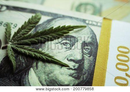 Marijuana Leaf on
