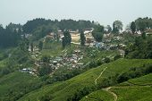 stock photo of darjeeling  - Darjeeling town on the and top of mountain famous for tea gardens West Bengal India Asia - JPG