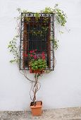 Mediterranean Style Window in Spain
