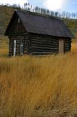 Cabin On Trough Road Fall Portrait poster