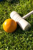 Croquet Stick And Yellow Ball