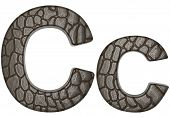 Alligator Skin Font C Lowercase And Capital Letters