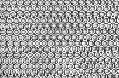 Background Of Arranged In Rows Of Nuts