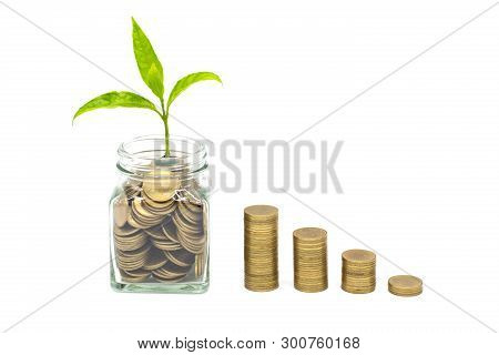 poster of Plant Growing In Coins Glass Jar With Isolated On White Background,  Money Saving And Investment Fin
