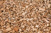 Wood chippings and coconut pieces background