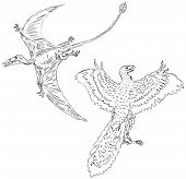 stock photo of pterodactyl  - Vector illustration of a pterodactyl and ancient birds - JPG