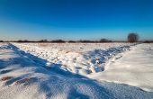 Winter Landscape Of The Field