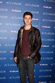 LOS ANGELES - FEB 13:  David Henrie arrives at the
