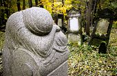 pic of polonia  - Historic Jewish cemetery at Okopowa Street in Warsaw Poland - JPG