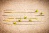 Sounds Of Nature. Music Notes Made Of Green Acorns And Wild Grass, On Retro Style Grungy Background. poster