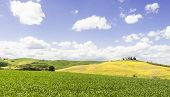 Italian Landscape With Meadows Early In The Spring. Agriculture In Italy, Fields, Pastures And Farmh poster