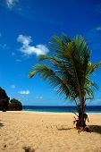 Guajataca Beach, Quebradillas, Puerto Rico, Usa.