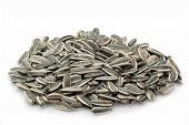 stock photo of sunflower-seeds  - Sunflower seeds on a bright background - JPG