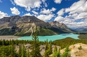 View of the spectacular Peyto Lake in Banff National Park, Alberta, Canada.