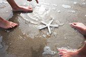 Children Discovering Starfish On Beach