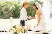 image of marquee  - Bride With Wedding Planner In Marquee - JPG