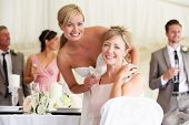 stock photo of gay wedding  - Bride With Mother At Wedding Reception - JPG