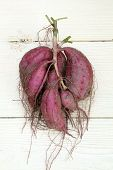 picture of root-crops  - sweet potato plant with tubers on wood table - JPG