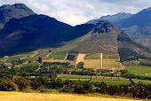 Rural Landscape, Capetown Province (South Africa)