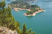 Pine Tree Island On The Lake(Turkey).