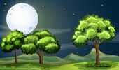 Illustration of a clean and green forest under the bright fullmoon