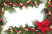 Christmas floral background border with red poinsettia flower, baubles, holly, mistletoe and winter