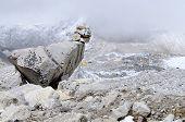 Path Sign On Everest Base Camp Trek,himalayas,nepal,asia