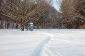 pic of porta-potties  - A curved path in deep snow leads to a portable toilet at the edge of a forest - JPG