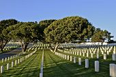 Headstones in a National Cemetery