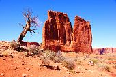 The Organ, Arches National Park