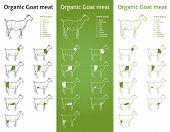 ORGANIC Goat meat parts set