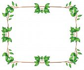 image of leafy  - Illustration of an empty frame with green leafy borders on a white background - JPG