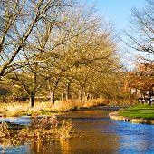 Autumn At Enynsford