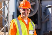 handsome mid age male electrician in electrical substation