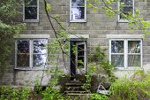image of abandoned house  - Front door of an abandon house overrun with vegetation - JPG
