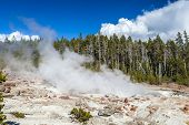 The Highest Geyser In Yellowstone National Park, Wyoming, Usa