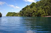 Jamaica. Sea lagoon and tropical vegetation