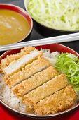 stock photo of pork cutlet  - Tonkatsu  - JPG