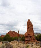 Sedimentary Pipe Idol