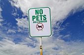 No Pet Sign