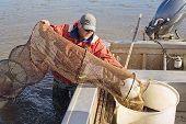 Eel Fisherman